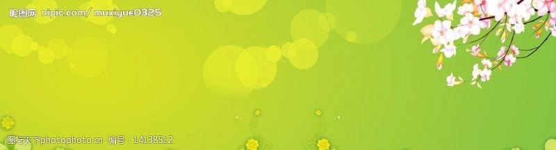 樱花广告绿色背景图片