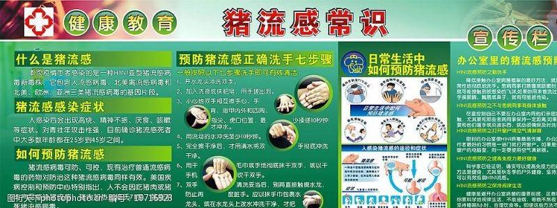 猪流感常识图片