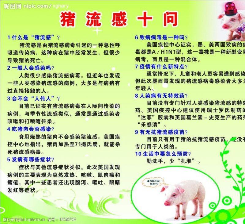 猪流感海报图片