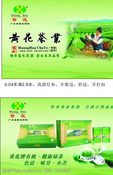 传广告黄花茶