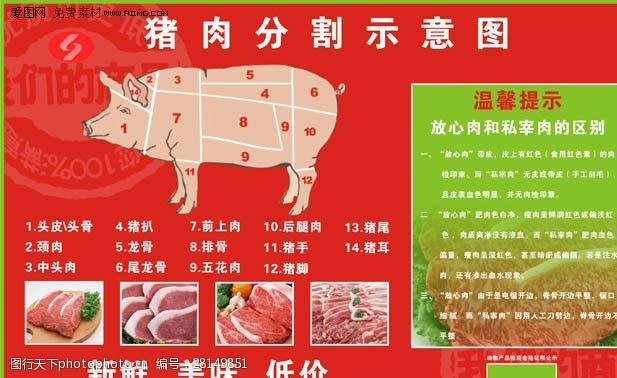 猪肉分割图猪流感放心肉