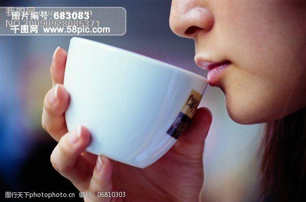 茶道免费下载茶道品茶